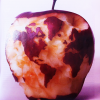 Thumbnail image for Can We Feed the World and Sustain the Planet? – Scientific American