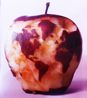 Post image for Can We Feed the World and Sustain the Planet? – Scientific American